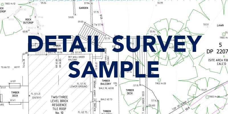 detail-survey-sample
