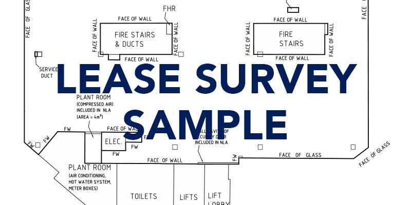 lease-survey-sample